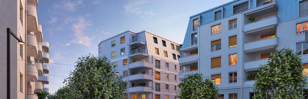 2 zimmer wohnung niederbipp - Wohnungen in Niederbipp